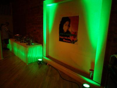 Superior Light And Sound | Greer, SC | Mobile DJ | Photo #15