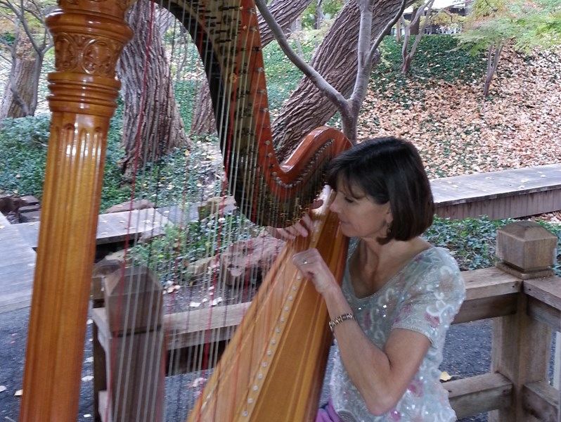 Maia Wright Jourde - Classical Harpist - Fort Worth, TX