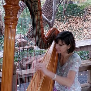 Fort Worth, TX Classical Harpist | Maia Wright Jourde