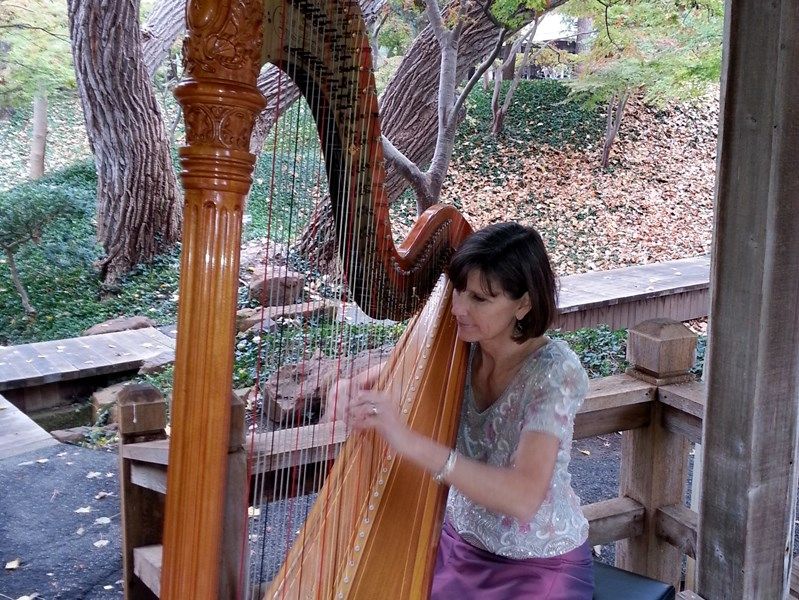 Maia Wright Jourde - Harpist - Fort Worth, TX