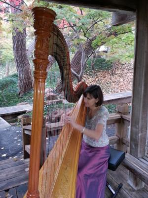 Maia Wright Jourde | Fort Worth, TX | Harp | Photo #12