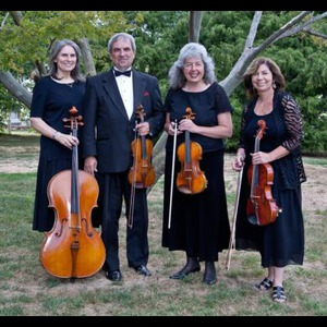 Darlington String Quartet | Arioso String Quartet