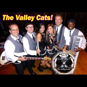 Modesto Cover Band | Valley Cats Band