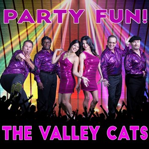Porterville Top 40 Band | Valley Cats Band