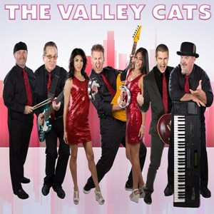 California Hot Springs 90s Band | Valley Cats Band