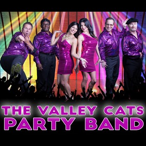 San Lucas Top 40 Band | Valley Cats Band