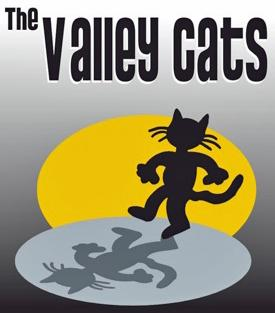 Valley Cats Band | Fresno, CA | Variety Band | Photo #25