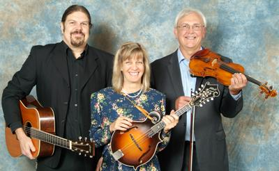 Stringtown Trio | Mason, MI | Celtic Band | Photo #1