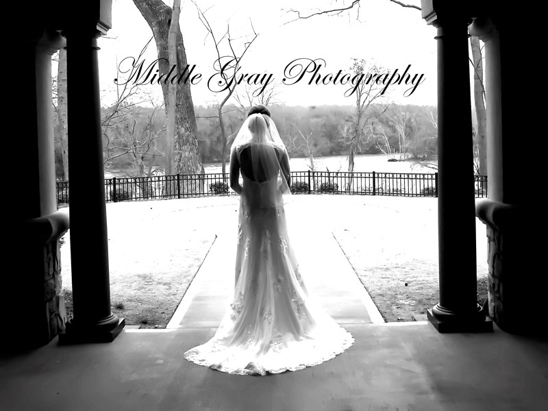 Middle Gray Photography - Dawn Castor - Photographer - Tampa, FL