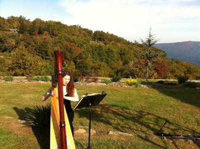 Michelle Cobley | Asheville, NC | Harp | Photo #10