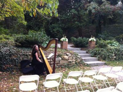 Michelle Cobley | Asheville, NC | Harp | Photo #8