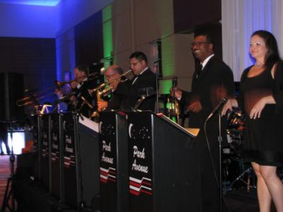 Park Avenue Orchestra | Long Grove, IL | Variety Band | Photo #11
