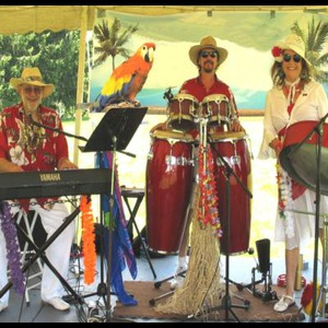 The Calypso Gypsies Steel Drum Band - Steel Drum Band - Diamond, OH