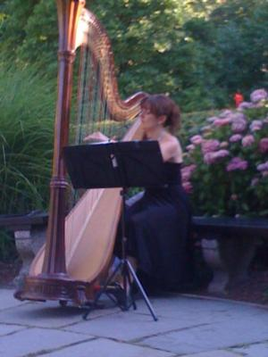 Kathryn Andrews | New York, NY | Harp | Photo #6