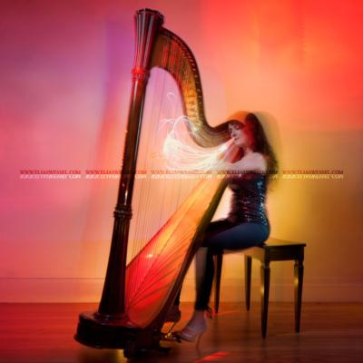 Kathryn Andrews | New York, NY | Harp | Photo #3