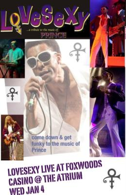 LoVeSeXy ..'a tribute to the music of PRINCE' | Boston, MA | Prince Tribute Act | Photo #9