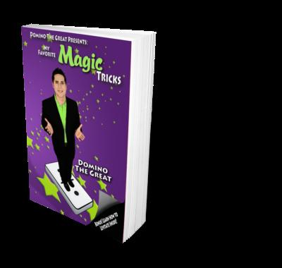 Amazing Kidshow Magician: Domino The Great | Danbury, CT | Magician | Photo #3