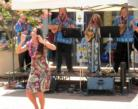 Tropical Sounds/ukulele Players & Hawaiian Band - Hawaiian Band - Arlington, VA