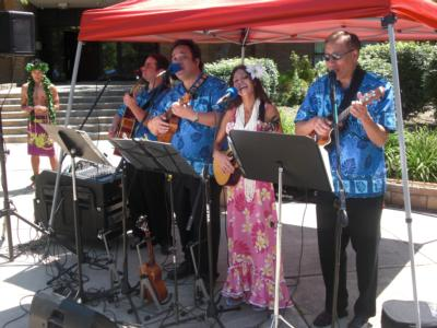 Tropical Sounds/ukulele Players & Hawaiian Band | Arlington, VA | Hawaiian Band | Photo #7
