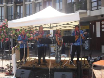 Tropical Sounds/ukulele Players & Hawaiian Band | Arlington, VA | Hawaiian Band | Photo #8