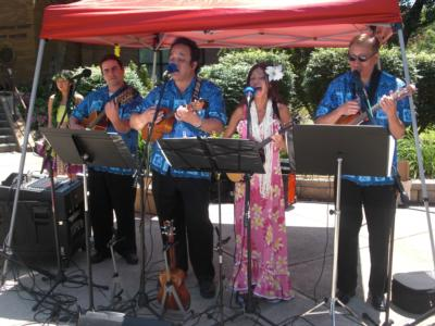 Tropical Sounds/ukulele Players & Hawaiian Band | Arlington, VA | Hawaiian Band | Photo #4