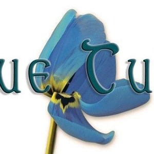 North Carolina Jazz Duo | Blue Tulip