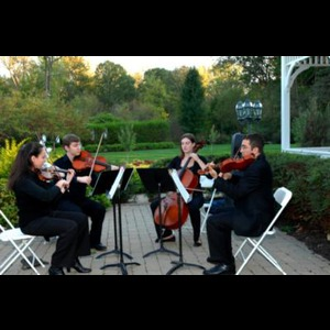 Anthem Strings - Classical Quartet - Ann Arbor, MI