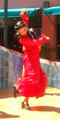 Paloma Rios | Clintondale, NY | Flamenco Dancer | Photo #2