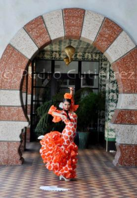 Paloma Rios | Clintondale, NY | Flamenco Dancer | Photo #9