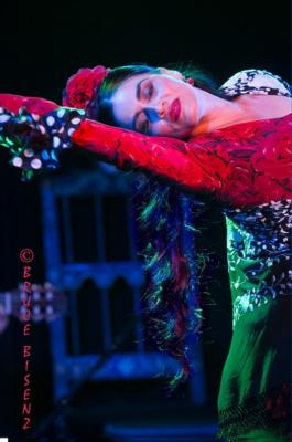 Paloma Rios | Clintondale, NY | Flamenco Dancer | Photo #21