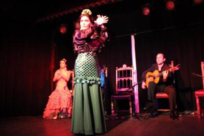 Paloma Rios | Clintondale, NY | Flamenco Dancer | Photo #10