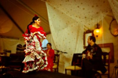 Paloma Rios | Clintondale, NY | Flamenco Dancer | Photo #13