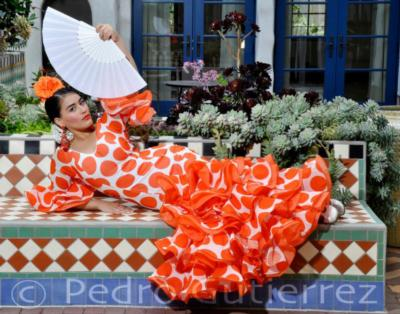 Paloma Rios | Clintondale, NY | Flamenco Dancer | Photo #7