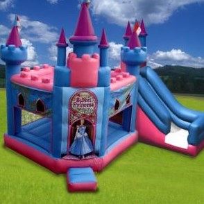 Affordable Party Inflatables in Minneapolis, MN