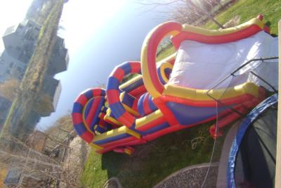 Usa Inflatables And Moonwalk Party Rentals | Minneapolis, MN | Party Inflatables | Photo #5