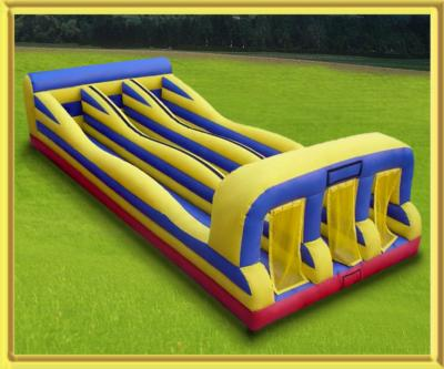 Usa Inflatables And Moonwalk Party Rentals | Minneapolis, MN | Party Inflatables | Photo #13