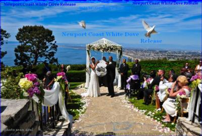 White Dove Release For Weddings & Events | Huntington Beach, CA | Dove Releases | Photo #2
