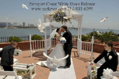White Dove Release For Weddings & Events | Huntington Beach, CA | Dove Releases | Photo #3