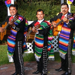 Beaverton Mariachi Band | Trio Sol De Mexico