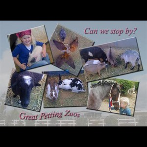Great Petting Zoos/great Pony Parties - Petting Zoo - Perris, CA