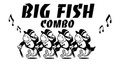 Big Fish Combo | Cooperstown, NY | Variety Band | Photo #5
