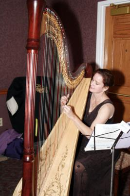 Theresa Tremmel, Indianapolis, Harp And Keyboard | Indianapolis, IN | Harp | Photo #10