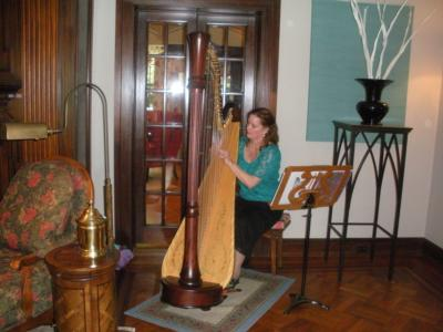 Theresa Tremmel, Indianapolis, Harp And Keyboard | Indianapolis, IN | Harp | Photo #2
