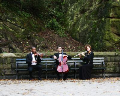 The Four Seasons Ensemble | New York, NY | Chamber Music Trio | Photo #10
