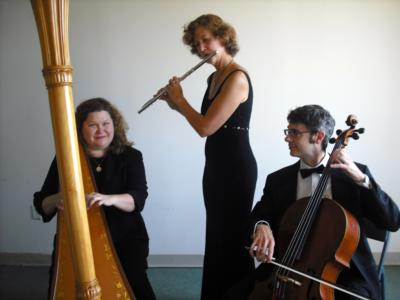 The Four Seasons Ensemble | New York, NY | Chamber Music Trio | Photo #7