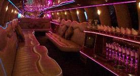 Safari Limousines | Raleigh, NC | Party Limousine | Photo #6