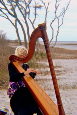 Julie | Savannah, GA | Classical Harp | Photo #5