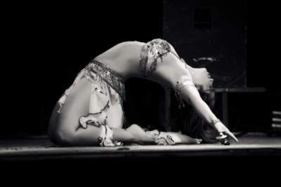 Adonia Belly Dance ~ Multi Award Winner | Chicago, IL | Belly Dancer | Photo #11