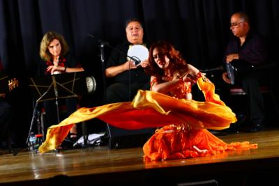 Adonia Belly Dance ~ Multi Award Winner | Chicago, IL | Belly Dancer | Photo #20