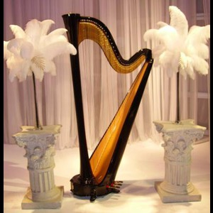 Fairview Harpist | Samara Egan